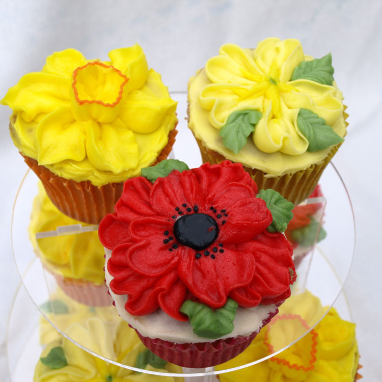 Cake Design Courses in Cornwall, Liskeard with Donna Jane ...
