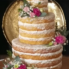 Rustic Naked Wedding Cake, Icing Sugar Dusted & Fresh Flowers