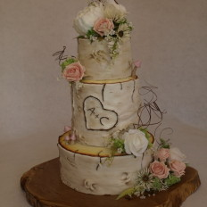 Silver Birch & Fairy Toadstools Wedding Cake
